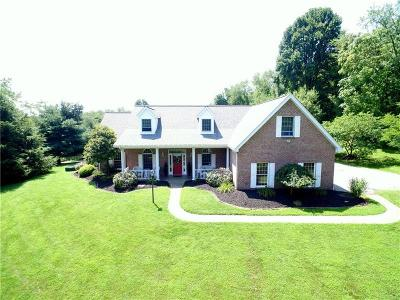 Westmoreland County Single Family Home For Sale: 420 Vernon Drive
