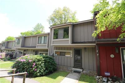 Condo/Townhouse Active Under Contract: 19b Craighead Drive