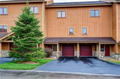 Somerset/Cambria County Condo/Townhouse For Sale: 446 Southwind Circle