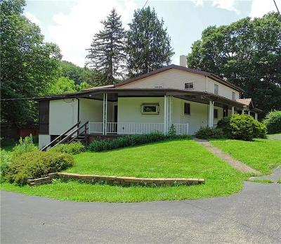 Single Family Home For Sale: 586 Armbrust Hecla Road