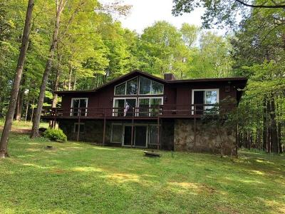 Somerset/Cambria County Single Family Home For Sale: 1180 Peninsula Drive