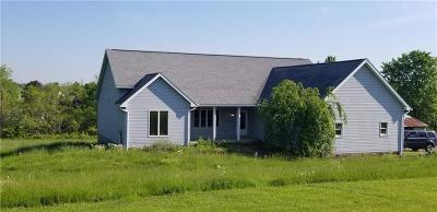 Single Family Home For Sale: 1298 Mount Pleasant Rd