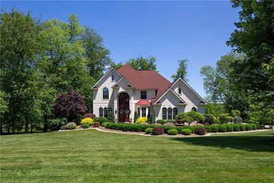 Single Family Home For Sale: 1005 Manor Valley Court