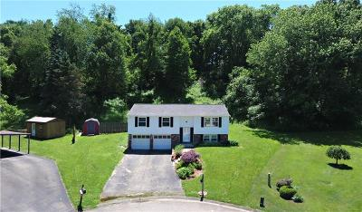 Single Family Home For Sale: 8 Quail Ct