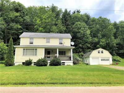 Somerset/Cambria County Single Family Home For Sale: 1368 Piedmont Rd