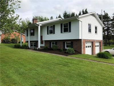 Somerset/Cambria County Single Family Home For Sale: 1138 Mary St