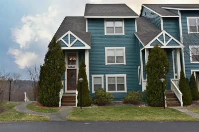 Somerset/Cambria County Condo/Townhouse For Sale: 9120 Aspen Drive