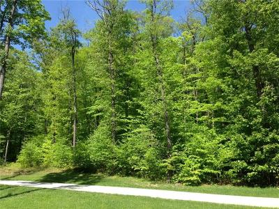Somerset/Cambria County Residential Lots & Land For Sale: Lot 28 Grouse Point