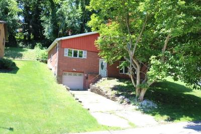 Wilkins Twp Single Family Home For Sale: 529 Lucia Road