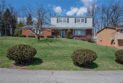 Penn Hills Single Family Home For Sale: 163 Deerfield Dr