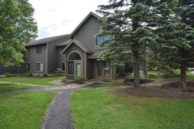 Hidden Valley Single Family Home For Sale: 5033 Summit View Ct.