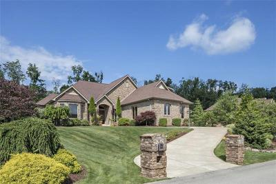 Murrysville Single Family Home For Sale: 4808 Greenhead Ct