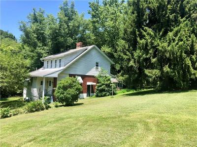 Single Family Home For Sale: 124 Altman Rd