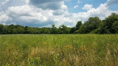Somerset/Cambria County Farm For Sale: Walker Road