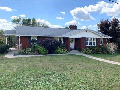 Single Family Home For Sale: 101 Chapel View Dr