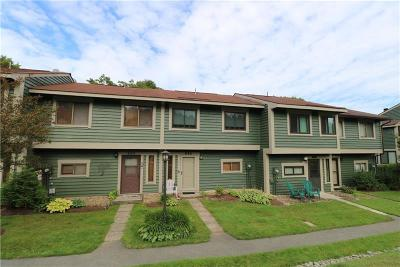 Somerset/Cambria County Condo/Townhouse For Sale: 531 Kooser Circle