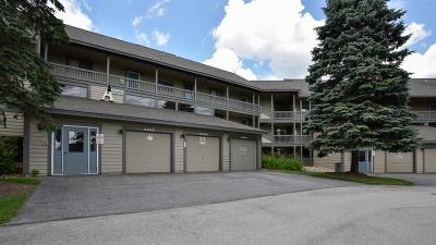 Somerset/Cambria County Condo/Townhouse For Sale: A33ab Stoneridge Dr