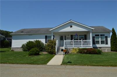 Somerset/Cambria County Mobile/Manufactured For Sale: 134 Angel Ln