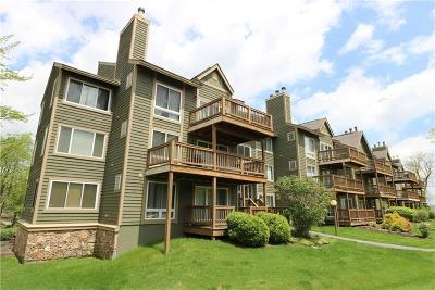 Hidden Valley Condo/Townhouse For Sale: 5325 Summit Drive