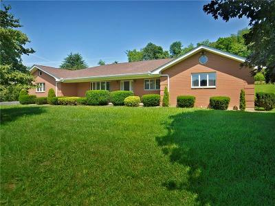 Single Family Home For Sale: 450 Slate Run Rd