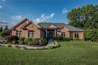 Single Family Home For Sale: 8967 Delaware Ave.