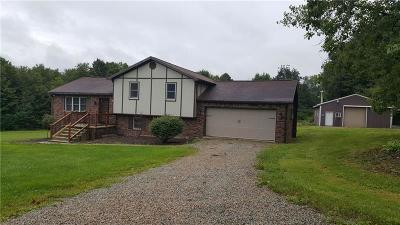 Somerset/Cambria County Single Family Home For Sale: 1383 Blacks Hill Rd