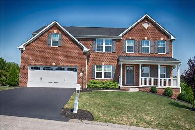Single Family Home For Sale: 233 Braveheart Dr