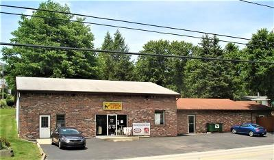 Commercial For Sale: 301 Manor Harrison City Road