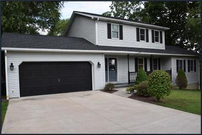 Somerset/Cambria County Single Family Home For Sale: 847 Park Ave