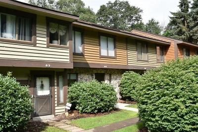 Somerset/Cambria County Condo/Townhouse For Sale: 64 Swiss Mountain Drive