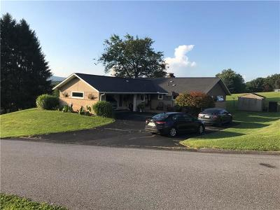 Somerset/Cambria County Single Family Home For Sale: 142 Maple Ln