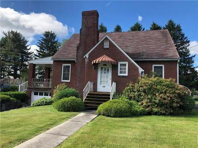 Somerset/Cambria County Single Family Home For Sale: 355 W Sanner St