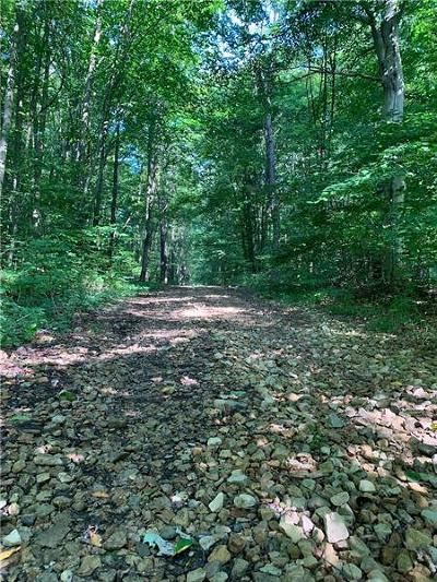 Somerset/Cambria County Residential Lots & Land For Sale: W West Shore Trail
