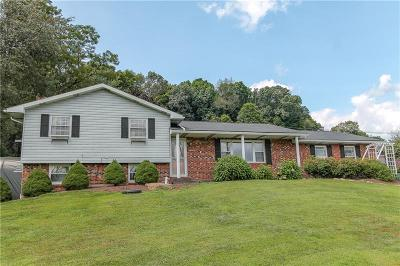 Somerset/Cambria County Single Family Home For Sale: 2767 Carpenters Park Rd