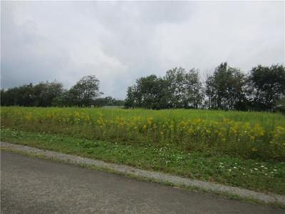 Somerset/Cambria County Residential Lots & Land For Sale: 156 Abby Ln