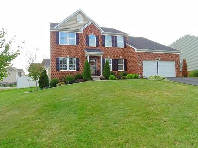 Single Family Home For Sale: 227 Jacobs Way