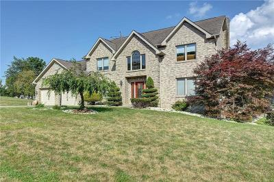 Single Family Home For Sale: 718 Rembrandt Circle