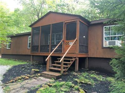 Somerset/Cambria County Mobile/Manufactured For Sale: 242 Aspen Mt. Rd.