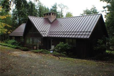 Indian Lake Boro Single Family Home For Sale: 131 Niagara Lane