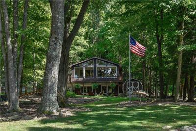Indian Lake Boro Single Family Home For Sale: 1217 Peninsula Dr