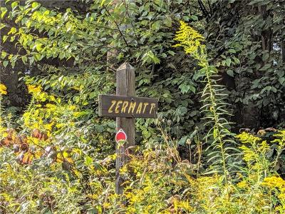 Somerset/Cambria County Residential Lots & Land For Sale: 319 Zermatt Dr