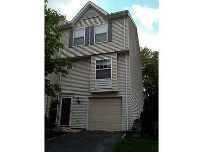 Townhouse Sold: 207 Palace Ct