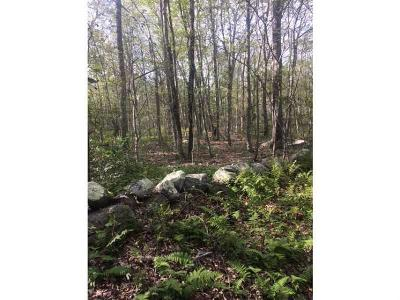Hopkinton Residential Lots & Land For Sale: 0 Dye Hill Rd