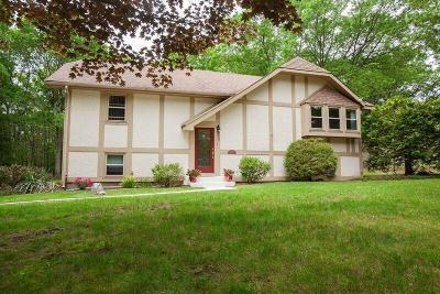 Johnston Single Family Home For Sale: 132 Bishop Hill Rd