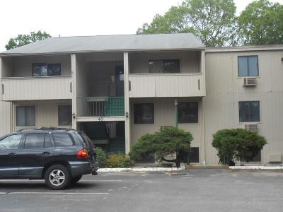Bristol County, Kent County, Newport County, Providence County, Washington County Condo/Townhouse For Sale: 40 Cowesett Av, Unit#33 #33
