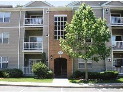 Bristol County, Kent County, Newport County, Providence County, Washington County Condo/Townhouse Act Und Contract: 98 Mill St, Unit#204 #204