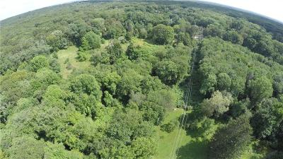 Warwick Residential Lots & Land For Sale: 0 Green Bush Rd