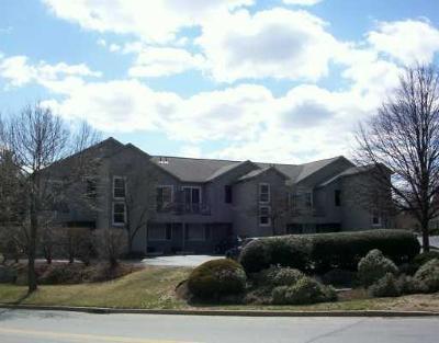 Cranston Condo/Townhouse For Sale: 10 East St, Unit#211 #211