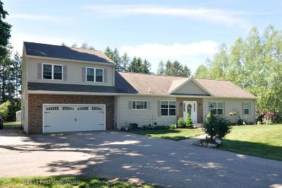 South Kingstown Single Family Home For Sale: 982 Saugatucket Rd