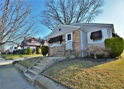 Providence Single Family Home For Sale: 265 Nelson St